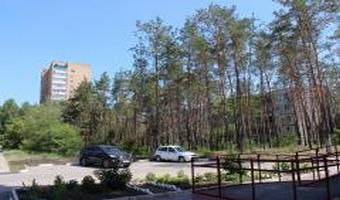 Депутаты и граждане выступили в защиту более 500 деревьев